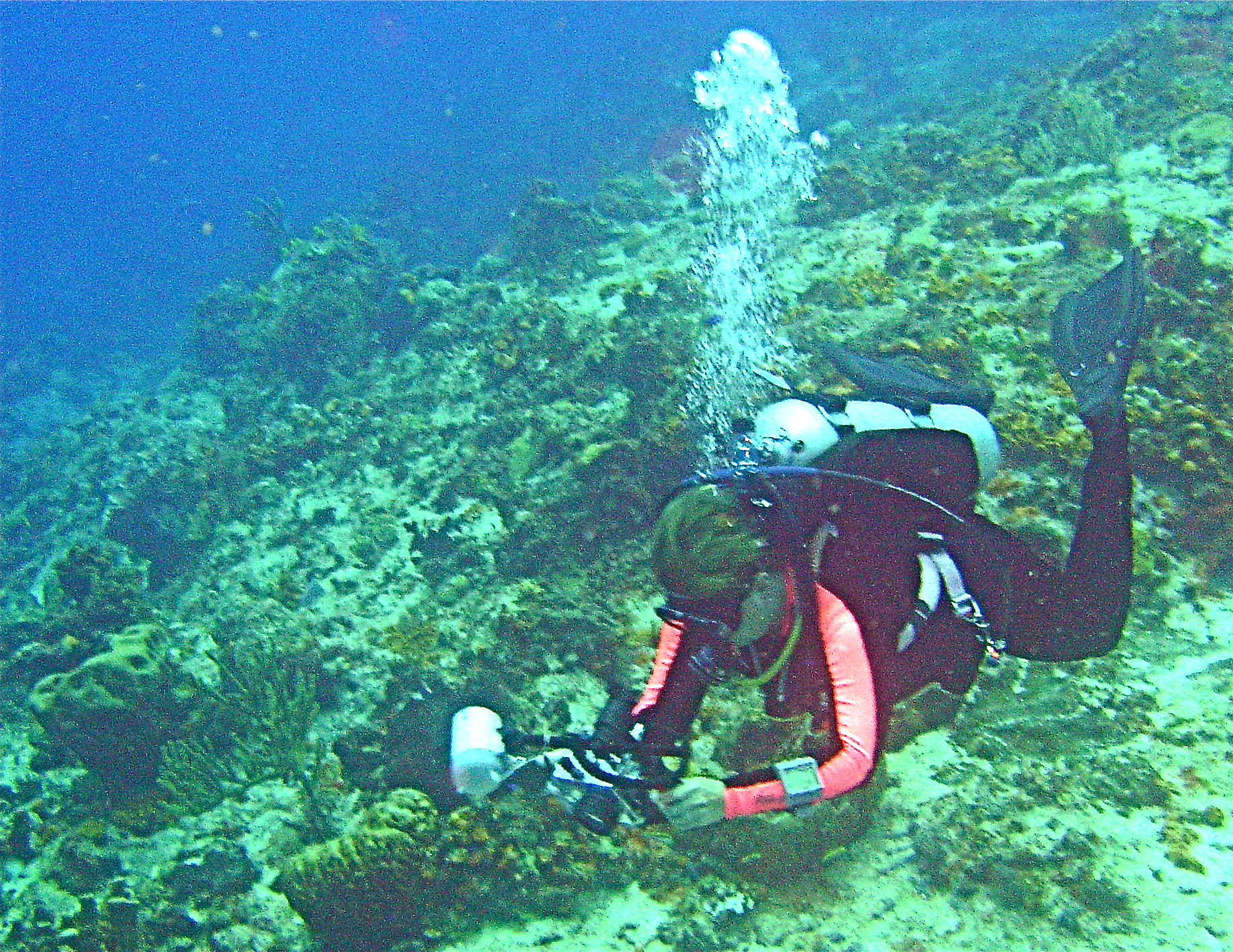 Underwater Photographer on a wall COZUMEL